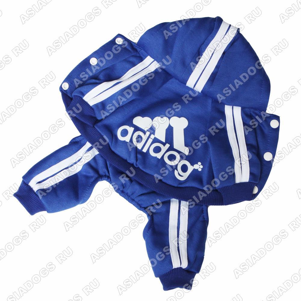 "Костюм ""Adidog"" синий"